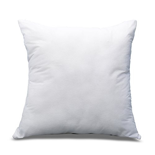 Throw Pillow Insert : DOZZZ 16
