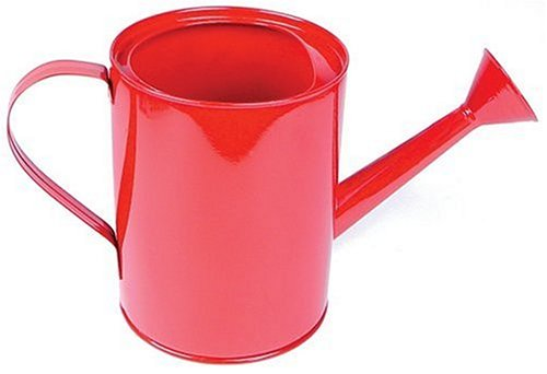Small Metal Watering Can (Colors May Vary) (Little Watering Can compare prices)