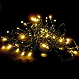 64 LED Battery Operated Outdoor and Indoor String Lights with Auto Timer Feature and 8 Functions, Warm White - 30 Day Batteries