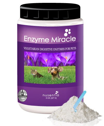 Enzymes for Dogs - Enzyme Miracle - Digestive Enzymes for Dogs - 360 Doses - Tasteless Powder