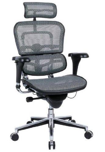 "Ergohuman Mesh Chair - 18.1?22.9"" Seat Height - High-Back Chair with Headrest - Gray"