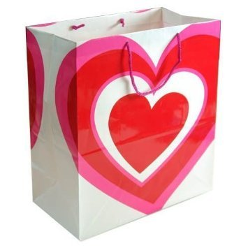 Valentine Large Gift Bag with Heart Design 17