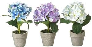 Set of three artificial potted hydrangeas flowers plants white blue purple 19cm amazon - Care potted hydrangea ...