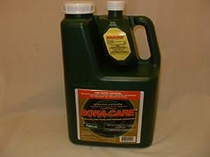 Bora-Care® with Mold-Care 1 Gallon 608794