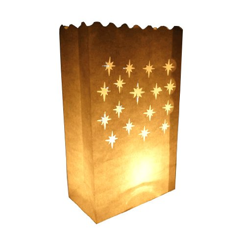 WeGlow International Small Starburst Luminary Bags