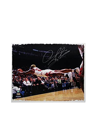 Steiner Sports Memorabilia Dennis Rodman Signed The Dive Canvas, Multi, 22 x 26