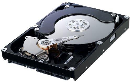 Samsung Spinpoint HD753LJ 750 GB F1 DT Desktop Class Hard Drive
