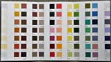 Flora of British Fungi: Colour Identification Chart Edinburgh Royal Botanic Garden