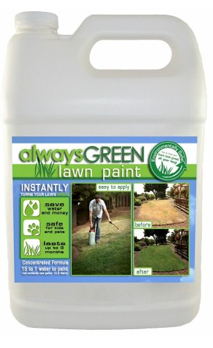 Always Green Lawn Paint Quart Size Concentrate
