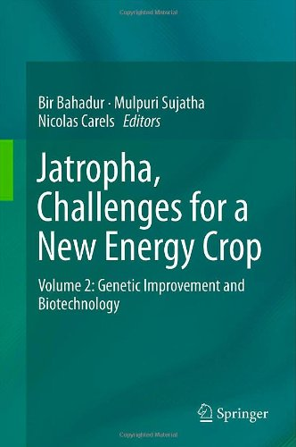 Jatropha, Challenges for a New Energy Crop: Volume 2: Genetic Improvement and Biotechnology