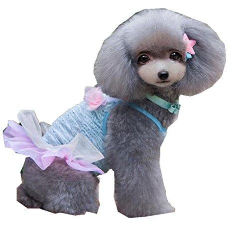 [Pet Dress,Haoricu Summer Autumn Brace Skirt Party Dress Pet Small Dog Cat Dress pet Clothing Costume (L,] (Costumes Braces)