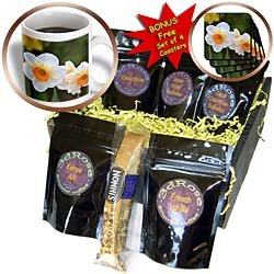 PS Flowers - Spring Floral - White and Orange Daffodils - Photography - Coffee Gift Baskets - Coffee Gift Basket