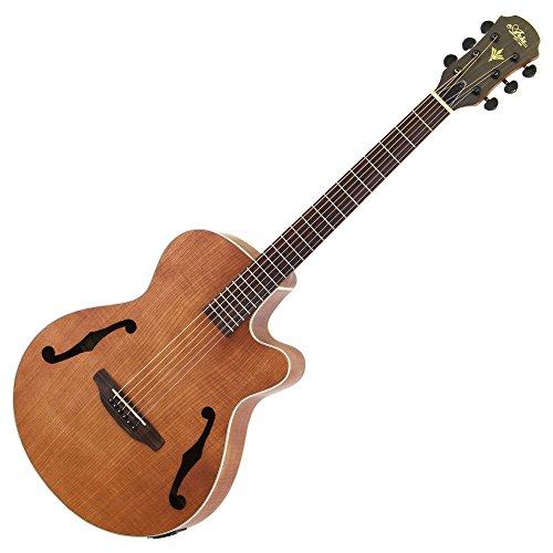 Aria アリア Fホール仕様 エレクトリック・アコースティックギター オープンポアマット仕上げ 4バンドイコライザー ナチュラル FET-F1 N ソフトケース付属