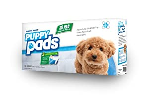 """Mednet Direct 17"""" x 24"""" Small Puppy Pads - 36 Count"""