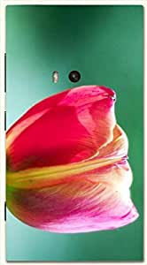 Noticeable multicolor printed protective REBEL mobile back cover for Nokia Lumia 920 D.No.N-L-12273-N920