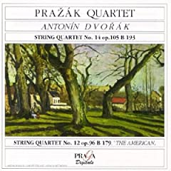 Dvorak - Musique de chambre 41SZCNARZYL._AA240_