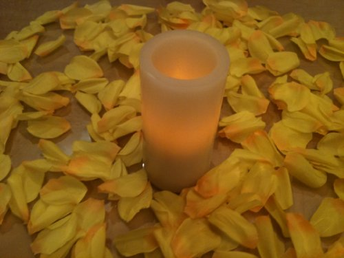 500 Yellow Silk Rose Petals Wedding Party Favors