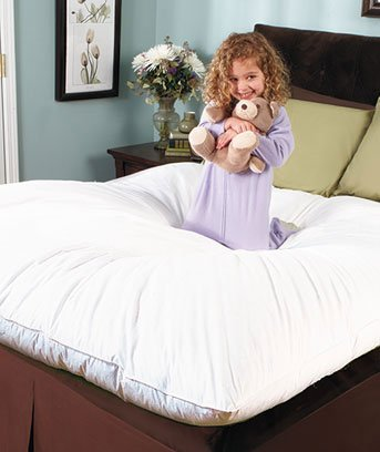 Best Price! Feather Bed Pillow Top (Full)