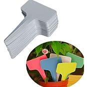 100X T-type Plastic Plant Label Flower Tag Marker Nursery Garden Stick 60x100mm