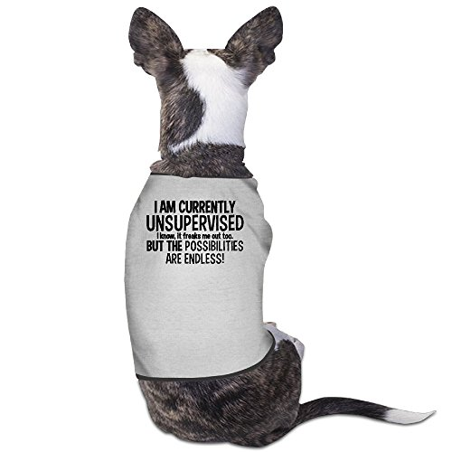 YRROWN I Am Currently Unsupervised Dog Sweater (Halloween Colorado 2016)
