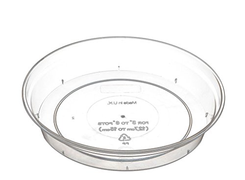 clear-orchid-pot-saucer-11-18-5cm-by-stewart-garden-products