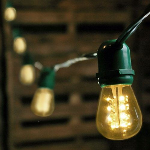 Commercial Led Edison String Lights, 48 Foot Green Wire, Warm White