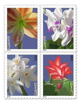 USPS Forever Stamps Winter Flowers Booklet from United States Post Office