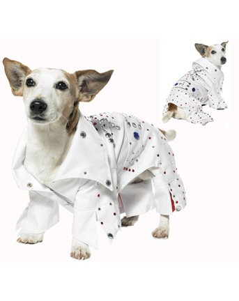 Rockstar Pet Costume