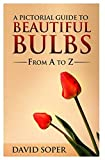 A Pictorial Guide To Beautiful Bulbs: From A to Z