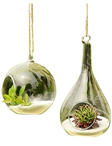 3 BEES Pure Manual Blown Processed Hanging Glass Flower Vase,Hanging Cone Crystle Terrarium for Home,Office,Garden and Wedding Decoration,Orb and Teardrop