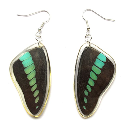 WeGlow International Blue Bottle Swollow Tail Butterfly Earrings - 1