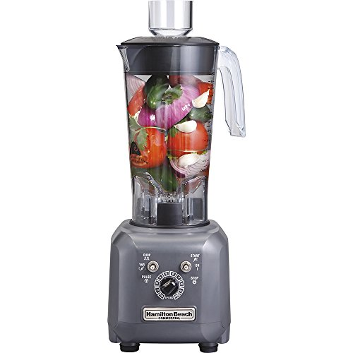 Hamilton Beach Hbf500 High-Performance Food Blender