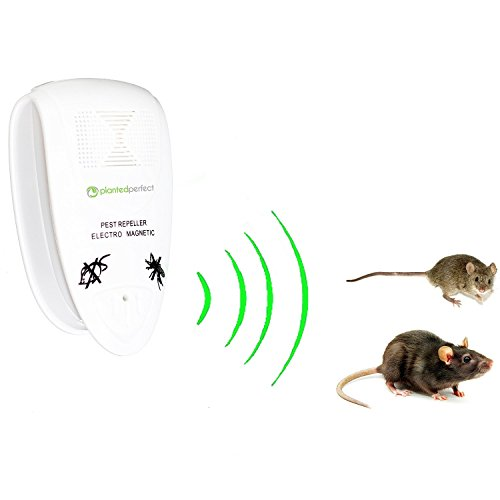 [NEW AND IMPROVED] PRO PEST CONTROL - Natural Ultrasonic Rodent Repeller Controls Home Pests, Keeps Family Safe - Repel Mice, Rats, Moths, Squirrels And More - RISK FREE GUARANTEE (Rat Whistle compare prices)