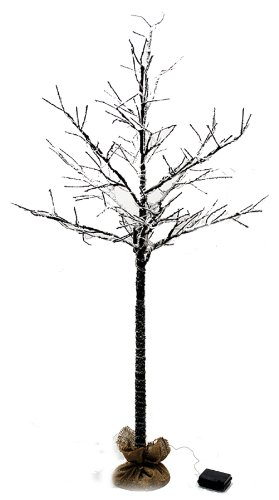 5 Ft Led Lighted Bare Branch Tree Dusted With Snow - 6 Hour Timer Function