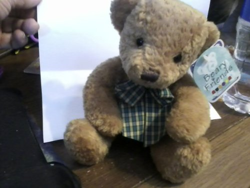 Beary Friends Teddy Bear