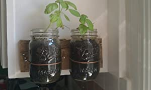 Wall Mounted Mason Jar Herb Planter