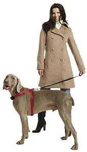Sporn Pet DSP32581 Nylon Simple Control Dog Harness, Small, Black
