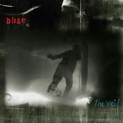 Veil by Nels Cline, Tim Berne and Jim Black