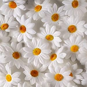 Artif deco tetes de marguerite artificielles x 24 en for Marguerite cuisine