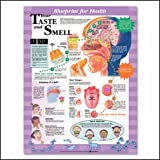 YOUR TASTE AND SMELL CHART