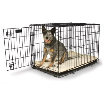 Petco Classic 1-Door Dog Crate, Large