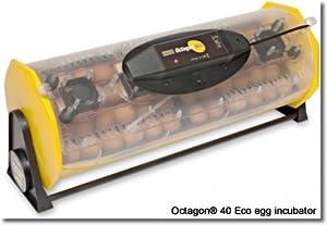 Incubator: Octagon 40 with Autoturn Cradle