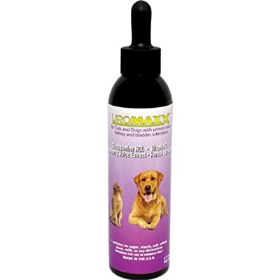 Uromaxx For Cats And Dogs - 6 Oz Bottle from ANIMAL NUTRITIONAL PRODUCTS