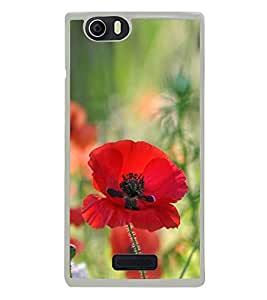 Red Flower 2D Hard Polycarbonate Designer Back Case Cover for Micromax Canvas Nitro 2 E311