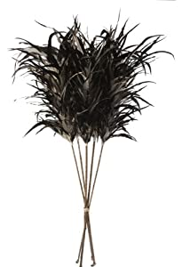 Lazy Susan Decorative Feather Stick, Black and Cream