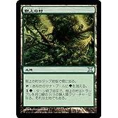 MTG 土地 日本語版 樹上の村 10ED-361 アンコモン