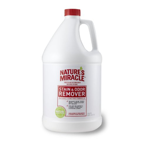 Nature's Miracle Stain & Odor Remover Gallon Picture