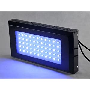 240w (3w*80) Led Blue and White LED Aquarium Grow Light Full Spectrum Fishtank Reef Coral Lps/sps+ Christmas Free Gift
