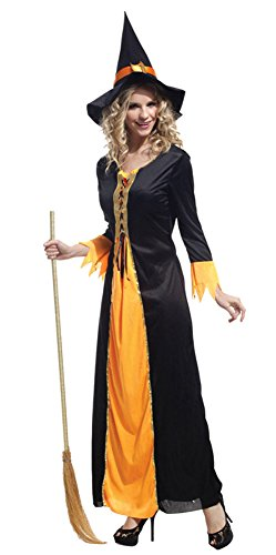 Dreamall Women's Halloween Witch Fairy Tale Fancy Dress and Hat