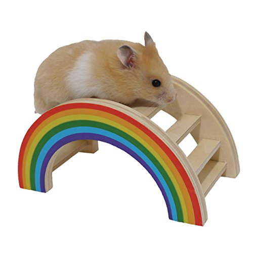 Rainbow Play Bridge – Hamster & Small Animal Toy 41Sq1nhNCRL